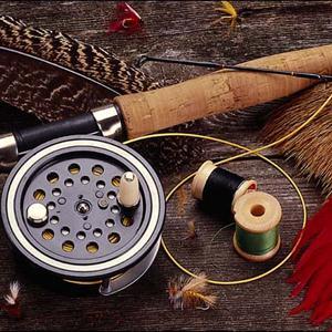 Охотничьи и рыболовные магазины Красноармейской